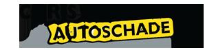 Chris van Velzen Logo